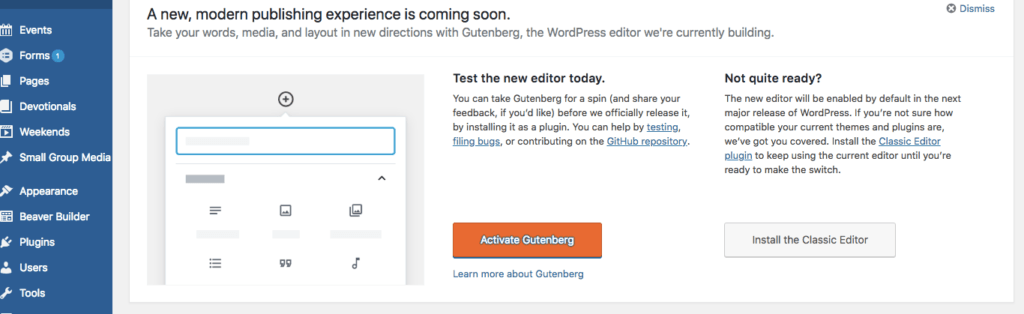 Option to Activate Gutenberg or Install the Classic Editor